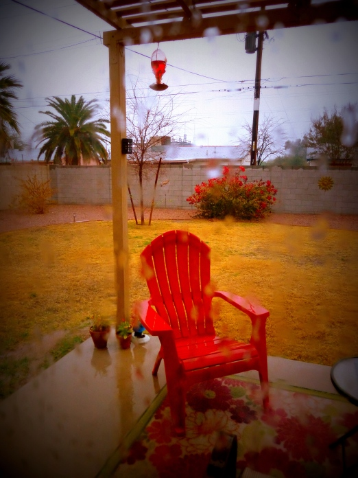 Drenched backyard...