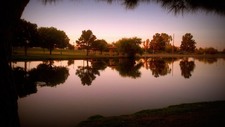 Sunrise at Vista Del Camino Park with Max on Sunday