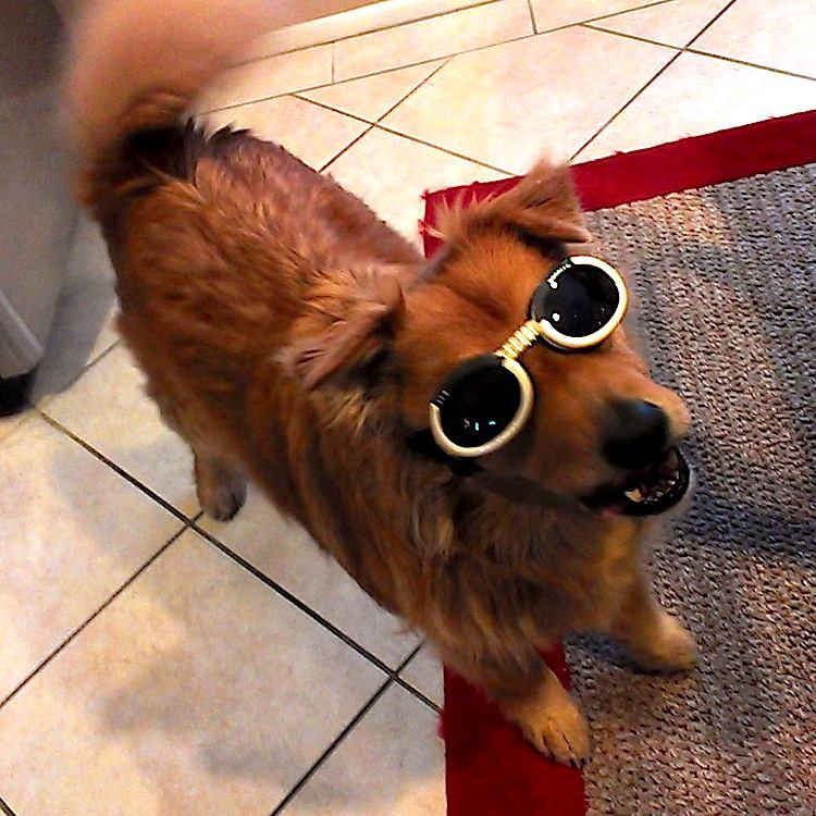 Cabo KNOWS he's cool...