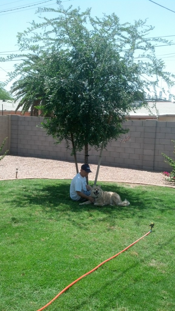 Steve and Max, under the Chinese Elm
